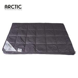 Arctic tyngdedyne